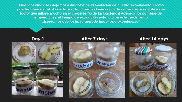 experimento luego de 14 días(1)